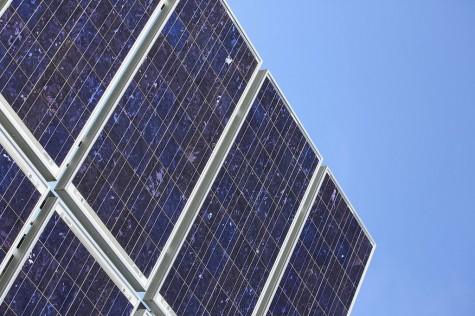 La Salle Cultivates Green Efforts
