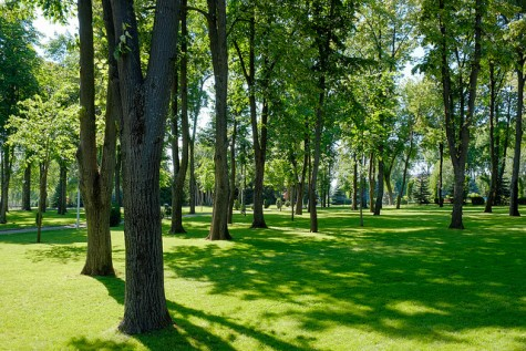 Frugal Fun in the Sun: Parks are Perfect