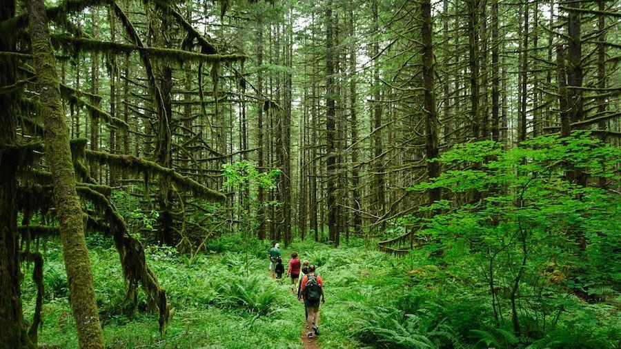 Hiking Hotspots