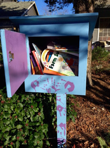 Little Free Libraries Create Inclusive Community