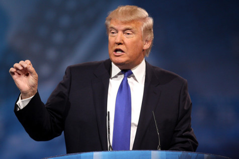 Donald Trump: Campaigning at the Next Level
