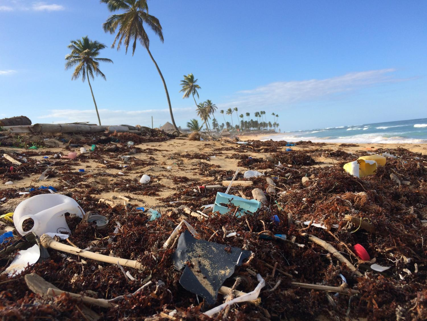 With over 5.25 trillion pieces of plastic floating around in the Earth's oceans, some of it makes its way onto our shores.