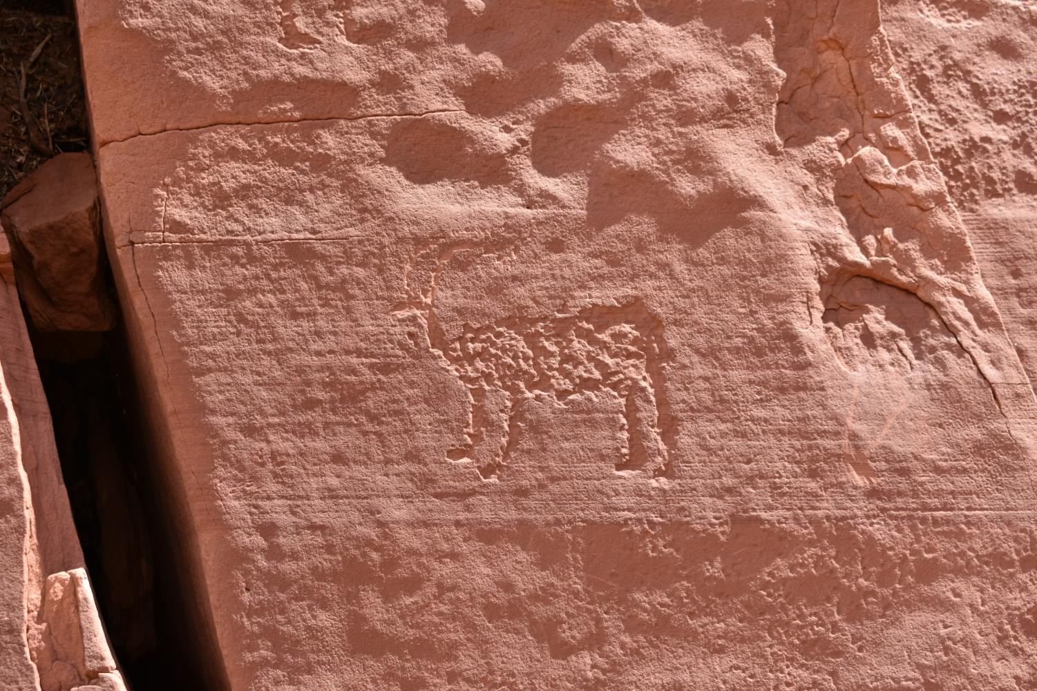 A+petroglyph+of+an+animal+found+in+the+side+of+rock+wall.