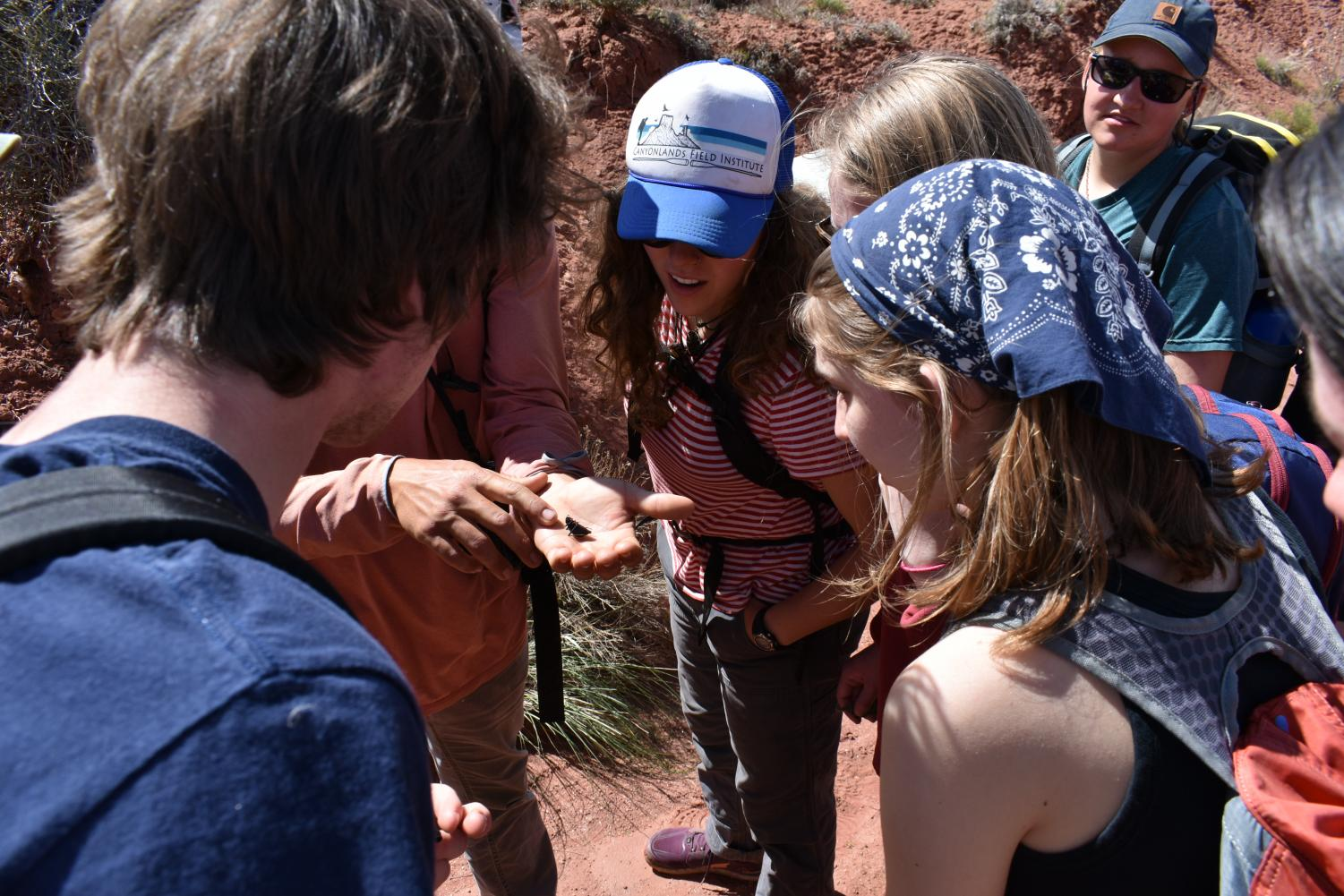 Students+learn+about+a+dead+beetle+that+was+found+while+on+a+hike.+