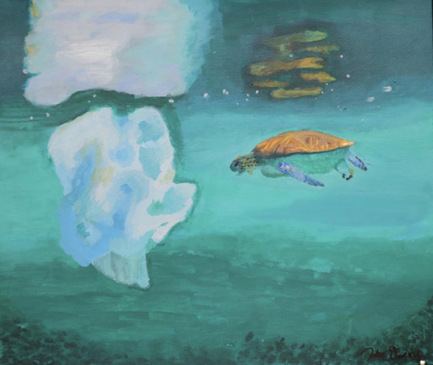 Sophomore+Jake+Owens+created+this+piece+of+a+lone+turtle+floating+in+the+sea+to+show+his+strong+feelings+against+pollution+in+the+oceans+and+the+negative+effects+it+is+having+on+sea+life.
