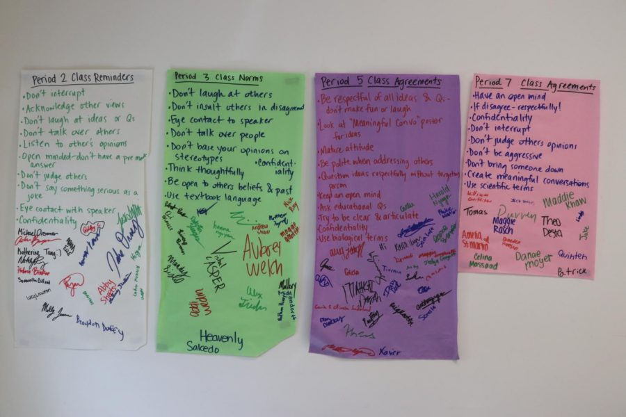 Ms. Hudson's second semester Health 2 classes created guidelines prior to starting the sex education unit.