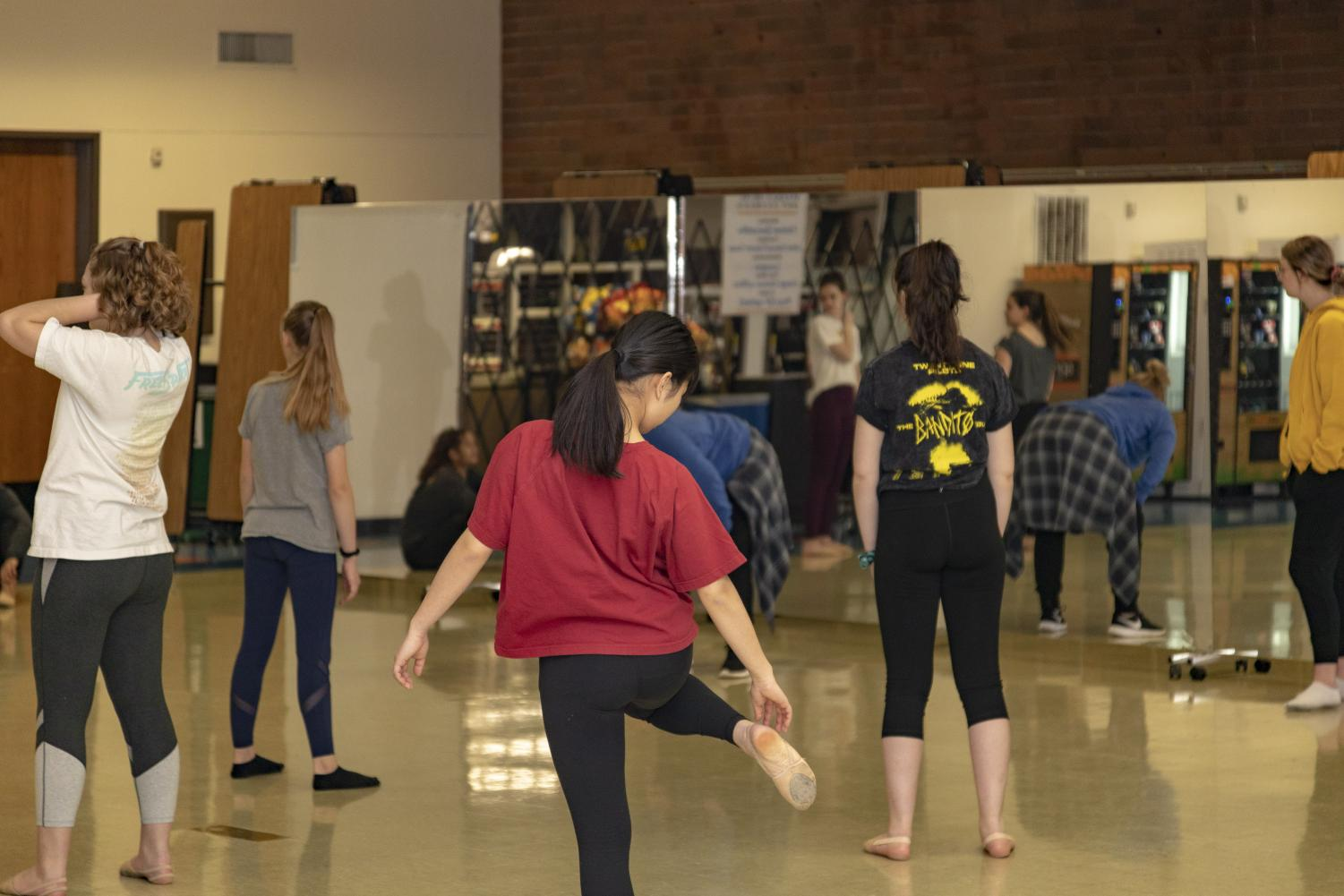 """When I dance, I feel free, and being a part of something bigger than myself is one of the best feelings ever,"" co-captain Aislinn McCarthy said."