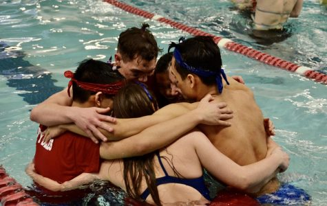 Both the boys and girls swim team emerged as champions at the district meet.