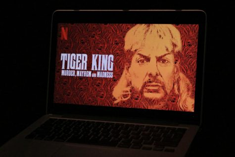 "Within the first ten days of its release, ""Tiger King"" had already reached over 30 million views."