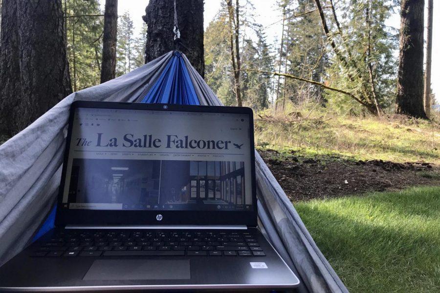 Staff Reporter Kalei Carter works on publishing in her hammock outside.