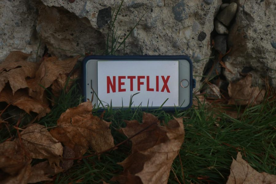Netflix consists of an endless array of TV shows and movies to cure your boredom, especially during the pandemic.