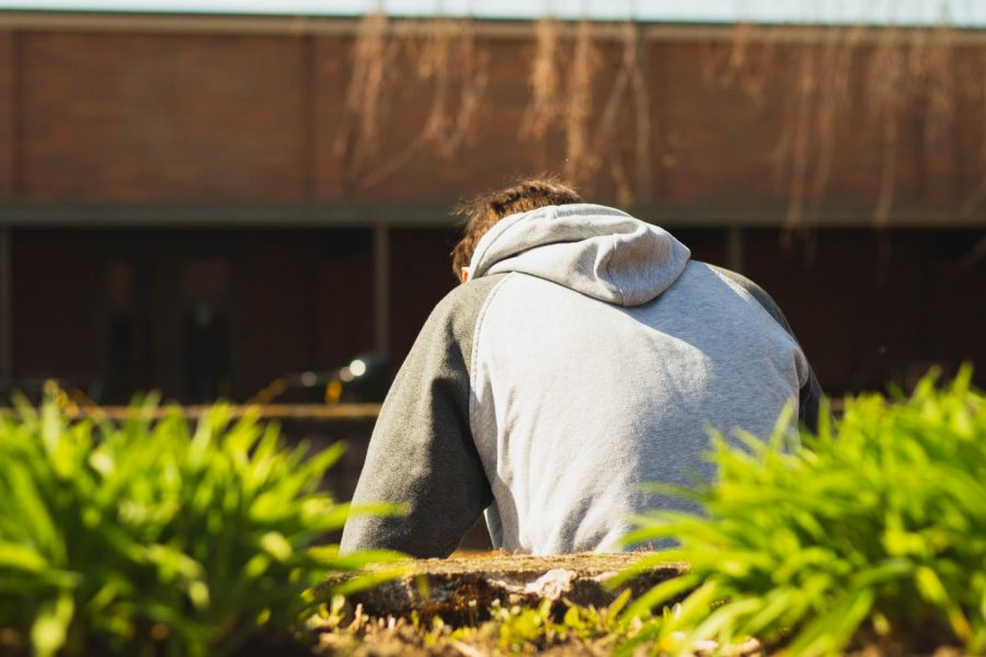 Nearly 50% of adolescents struggle with a mental illness, and roughly 14% of adolescents receive treatment through therapy.