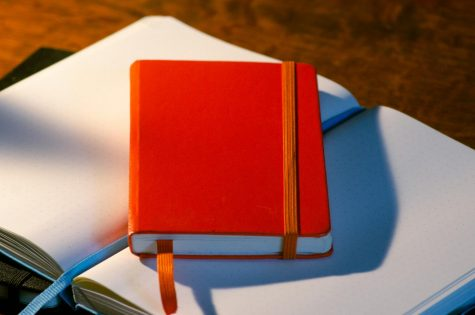 Novel November is fast approaching, as writers prepare their stories.